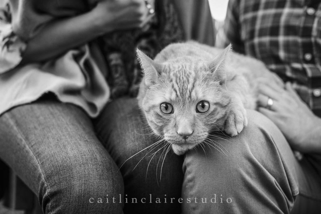 Caitlin-Claire-Studio-Goltz-150